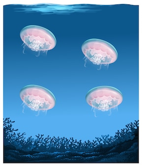 Jellyfish under deep ocean