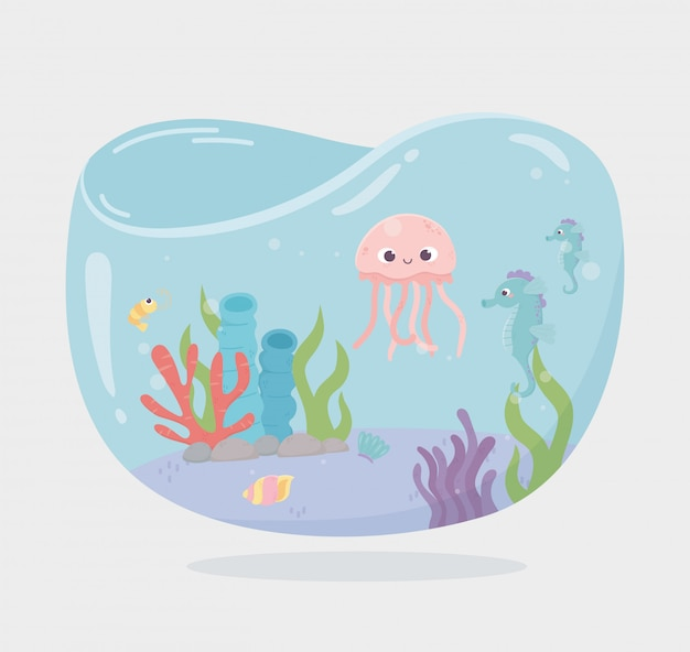 Jellyfish seahorse fishes reef water shaped tank for fishes under sea cartoon vector illustration