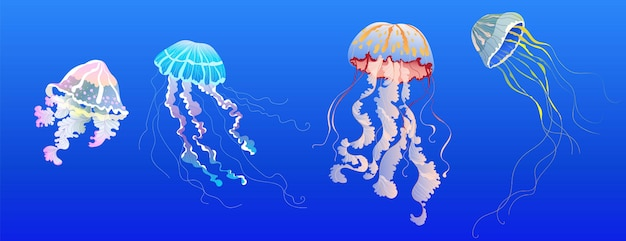 Jellyfish set. hand-drawn realistic  jellyfish collection for banner, card design. tropical, exotic sea animals. modern transparent medusa. isolated elements.