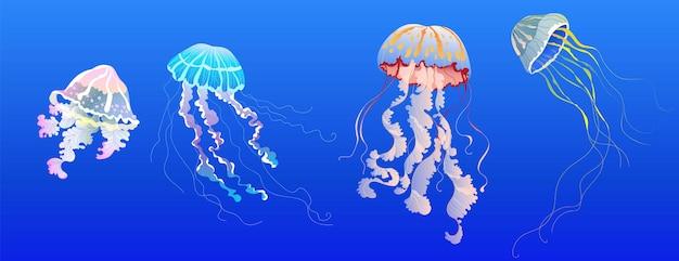 クラゲセット。バナー、カードデザインの手描きの現実的なクラゲコレクション。熱帯のエキゾチックな海の動物。現代の透明なメデューサ。孤立した要素。