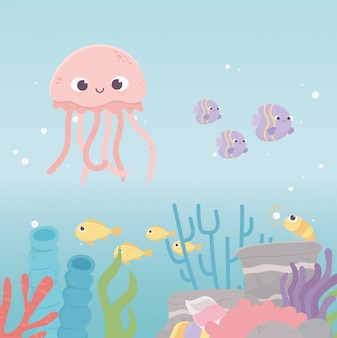 Jellyfish shrimp fishes life coral reef cartoon under the sea
