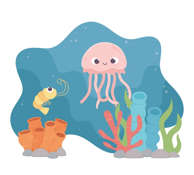 Jellyfish shrimp life coral reef cartoon under the sea