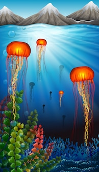 Jellyfish swimming under the ocean