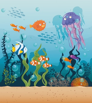 Jellyfish with fishes wild marine animals in ocean, sea world dwellers, cute underwater creatures,habitat marine concept