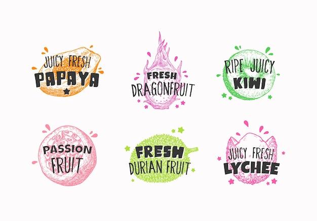 Juicy fresh ecxotic fruits badges labels or logo templates collection hand drawn papaya lychee pitay...