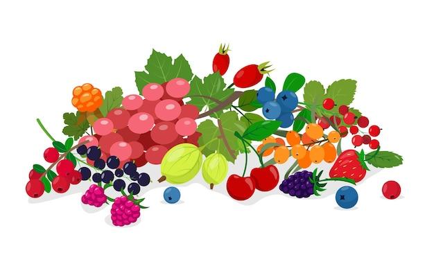 ジューシーな新鮮な野生と庭のベリーは、毎日のビタミンと健康食品のためのベリーのコレクションをミックスします