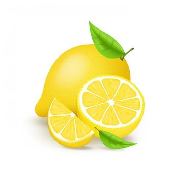 육즙이 레몬 슬라이스와 나뭇잎. 신선한 감귤 류 과일 전체와 반 격리 된 그림. 흰색 배경에 고립 된 3d