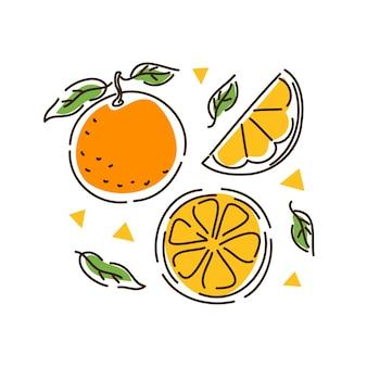 과즙 오렌지 세트. 감귤류 과일, 오렌지 조각, 윤곽선 스타일의 귤. 벡터 일러스트 레이 션.