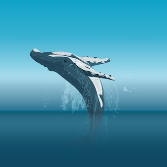 바다에서 만화 향유 고래 점프
