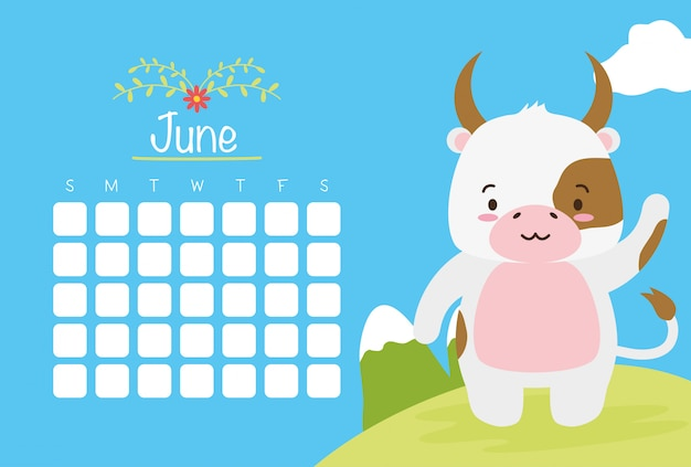 June calendar  with cute cow over blue, flat style
