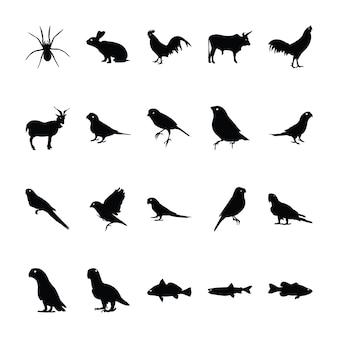 Jungle animal pictograms collection