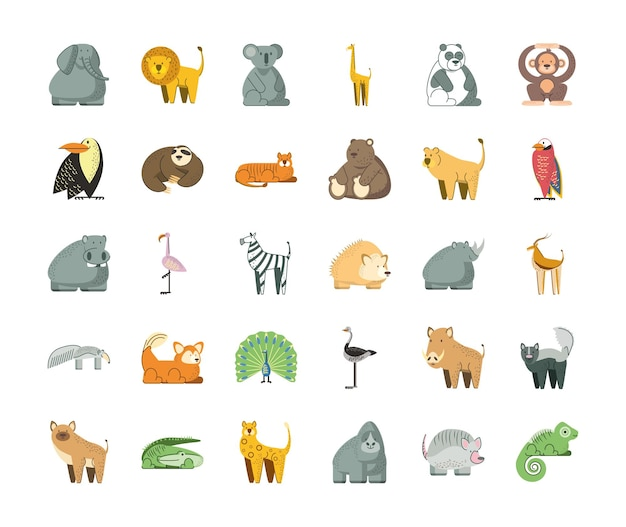 Jungle animals cartoon elephant lion koala panda bear hippo and more  illustration