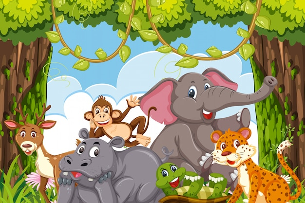 Jungle animals in a forest claring