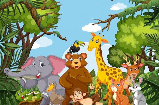 Jungle animals in natue scene