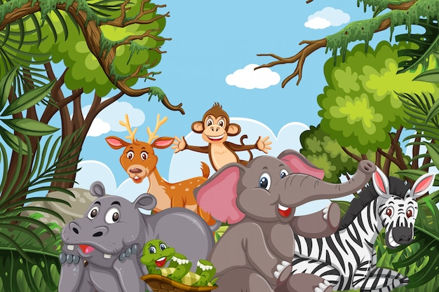 Jungle animals in nature scene
