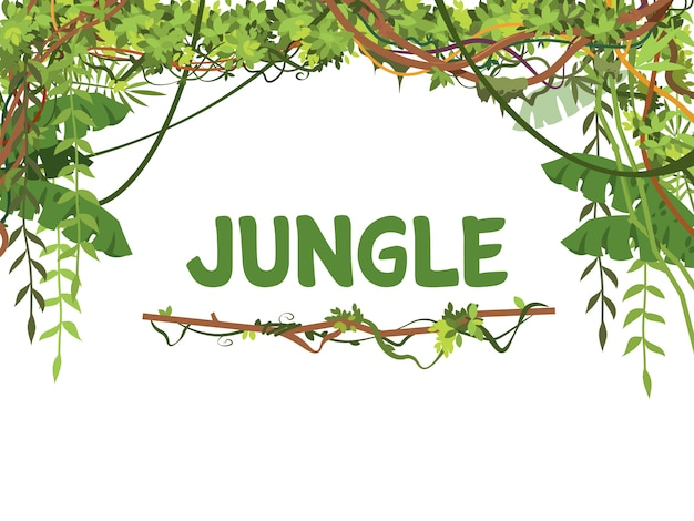 Jungle exotic leaves and lianes  background