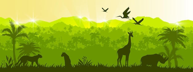 ジャングルの森のシルエット風景緑の熱帯の自然の背景