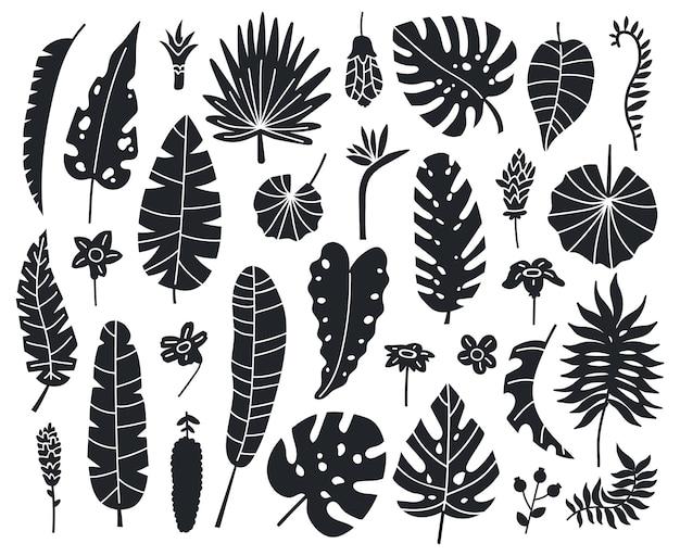 정글 나뭇잎 실루엣. 이국적인 팜, 바나나 및 몬스 테라 흑백 나뭇잎 벡터 세트