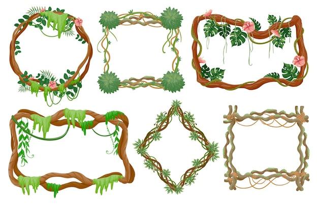 정글 덩굴 프레임. 이끼, 덩굴 열대 잎, 이국적인 꽃이 있는 열대우림 가지와 원형 및 사각형 프레임 벡터 세트. 프레임 환경, 단풍 야생 동물 열대 식물 그림