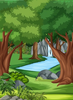 Jungle scene with many trees and waterfall