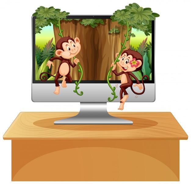 Тема джунглей на фоне компьютера