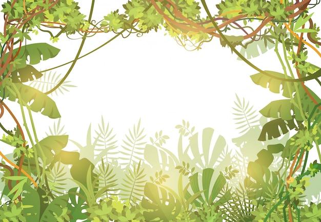 정글 열 대 프레임 배경입니다. 열대 나뭇잎과 덩굴 식물이있는 열대 우림. 열 대 나무와 자연 풍경입니다. 벡터 일러스트 레이 션