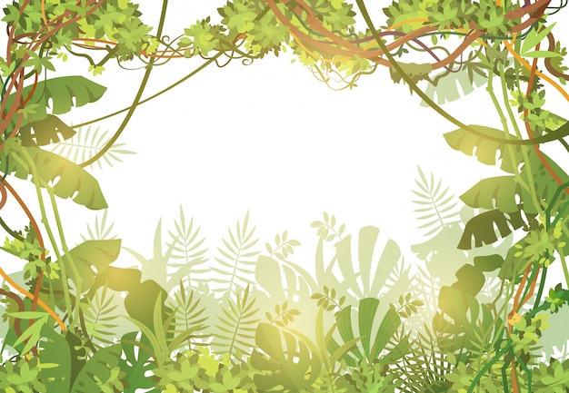 Jungle tropical frame background. rainforest with tropic leaves and liana vines. nature landscape with tropical trees. vector illustration