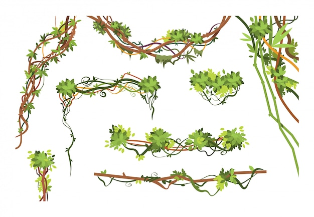Jungle vine branches. cartoon hanging liana plants. jungle climbing green plant collection