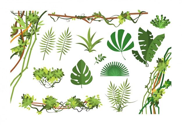 정글 덩굴. 열대 우림 잎과 리아나 자란 식물 만화. 세트