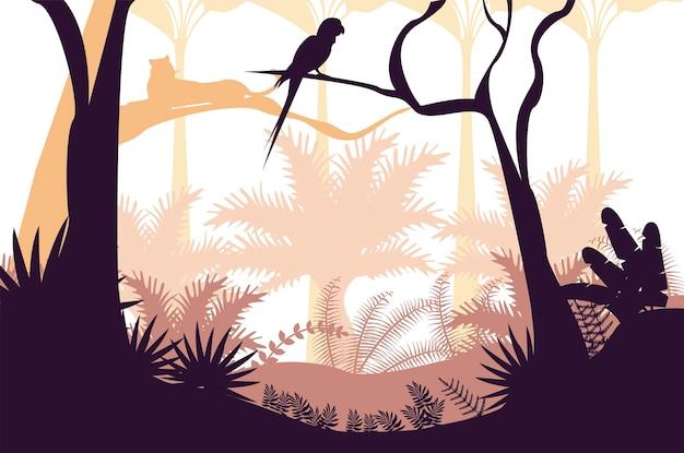 Джунгли дикая природа закат пейзаж со сценой попугая