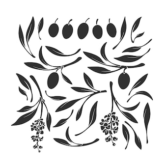 Kalamata olives set silhouettes shape of branch isolated leaves fruits flower