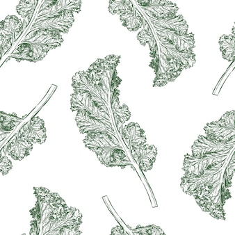 Kale seamless pattern vector. hand draw sketch vector.