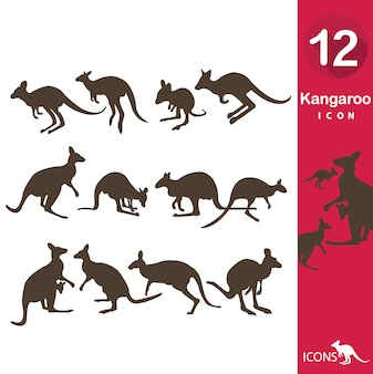 Kangaroo icons collection
