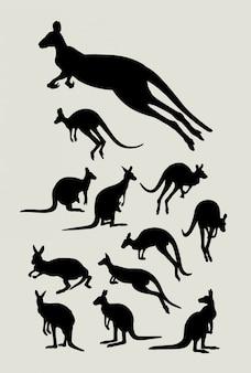 Kangaroo sil,houette