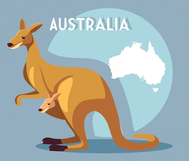 Kangaroo with map of australia