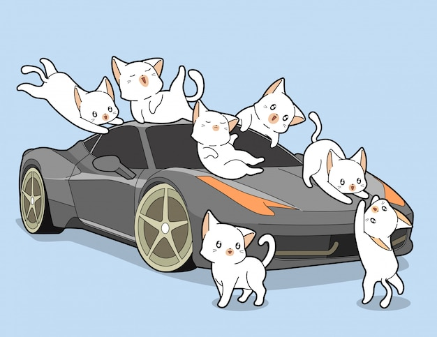 Kawaii cats and auto car.