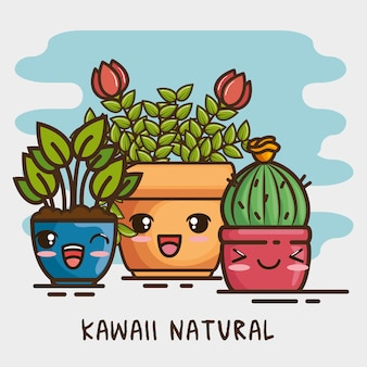 Kawaii pot natural plant cartoon