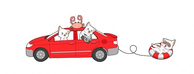 Kawaii кошки путешествуют в отпуске