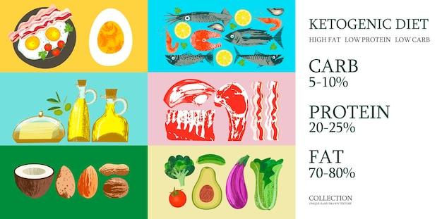 케톤 생성 다이어트. 케토 다이어트를 위한 다양한 제품 세트. 고유한 벡터 손으로 그린 텍스처와 벡터 일러스트 레이 션. 다른 제품과 함께 다채로운 포스터입니다.