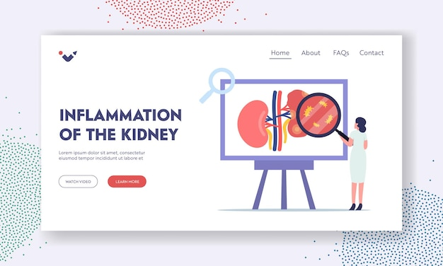 Kidney inflammation landing page template. pyelonephritis, tiny doctor nephrologist character doing medical research. urology nephrology renal diseases, stones, cystitis. cartoon vector illustration