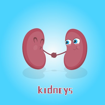 Kidneys hold hands smiling cartoon character icon banner