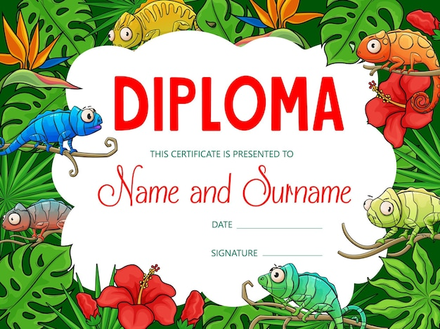 Kids education diploma with cartoon chameleons in tropical jungle. certificate of school graduation, achievement award and honor gift with background frame of chameleon lizards and palm flowers