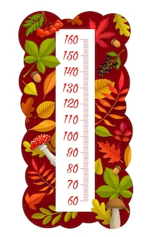 Kids height chart, autumn leaves, berries, mushrooms and acorns, vector growth measuring meter. kid measure scale or baby height ruler with cartoon autumnal harvest of maple, birch or oak leaf