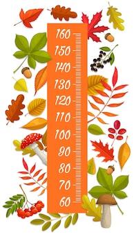 어린이 키 성장 차트는 단풍, 열매, 버섯 및 도토리를 측정합니다. 만화 오색 식물을 사용한 어린이 키 측정을 위한 벡터 벽 스티커 소아과 측정기. 스타디오미터 스케일