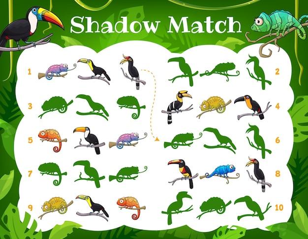 Игра теней для детей, туканы и хамелеоны
