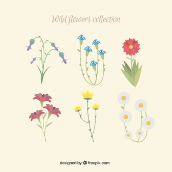 Kind of hand drawn flowers