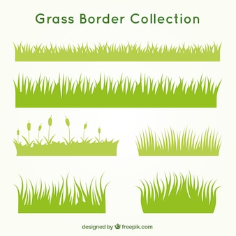 Kinds of grass set