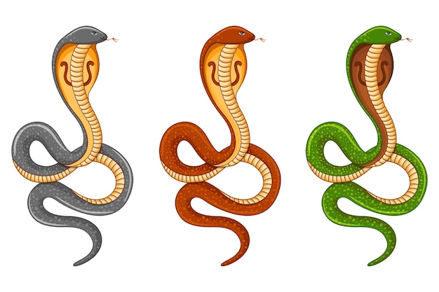 King cobra snake set naag panchami festival Premium Vector