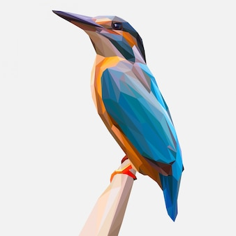 Kingfisher on the branch illustration