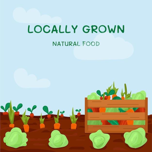 Kitchengarden с большим количеством овощей и деревянным ящиком, полным свежих овощей